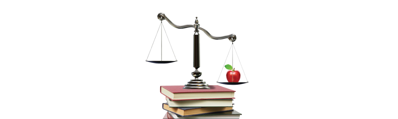 Public School Education Advocate and Attorney